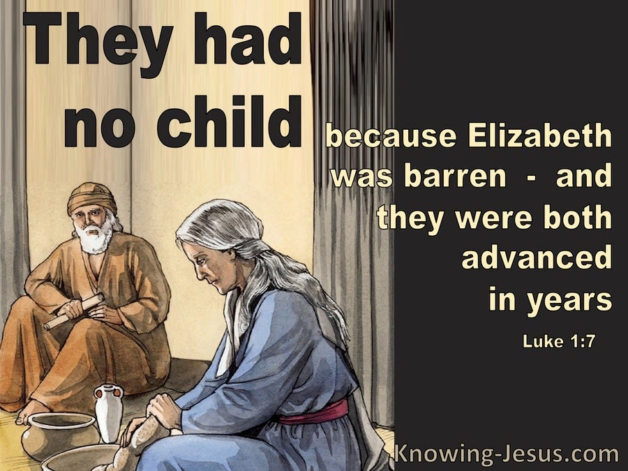 Luke 1:7 They Had No Child Because Elizabeth Was Barren (brown)